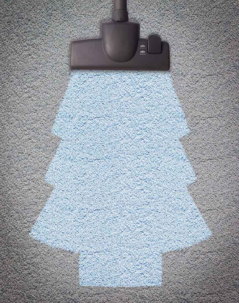 Schedule Extra Cleanings During the Holidays